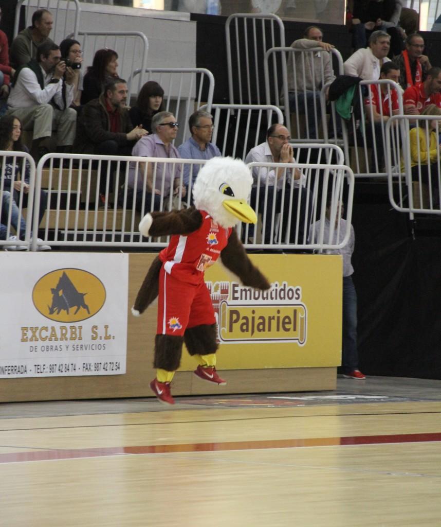águila(2)